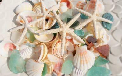 貝 を 財 に変える方法💛